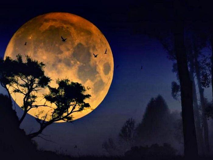 интересные снимки луны