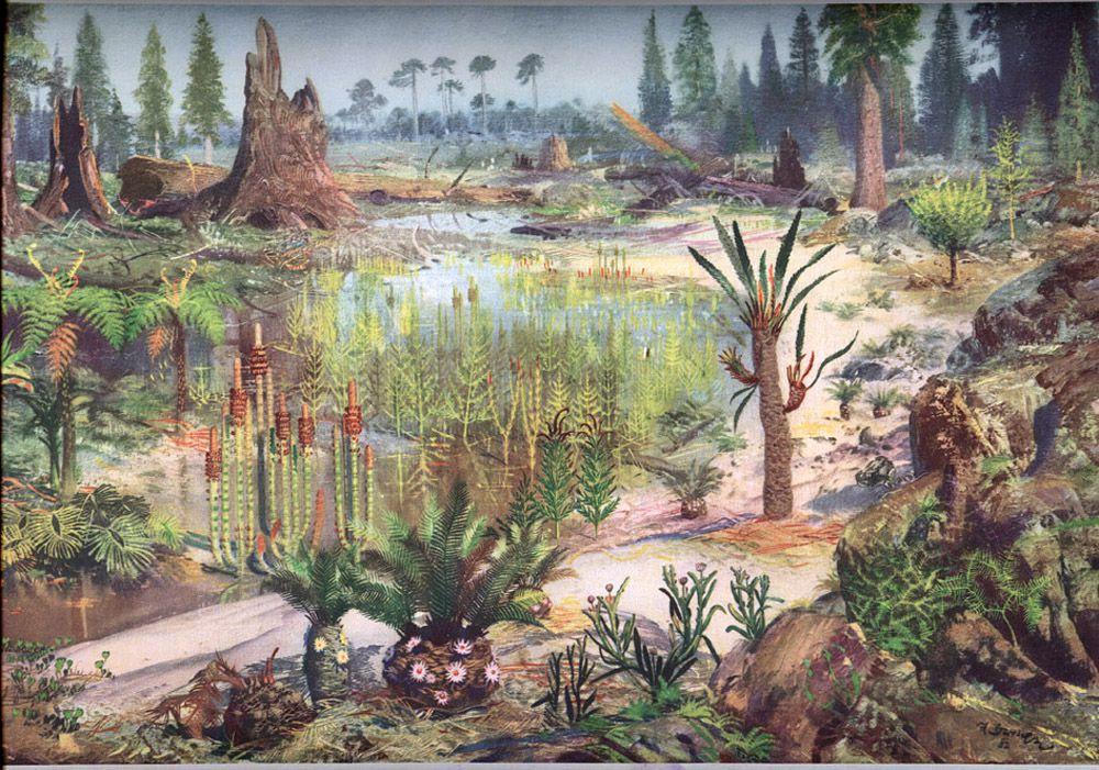 Картинки по запросу Триасовый период