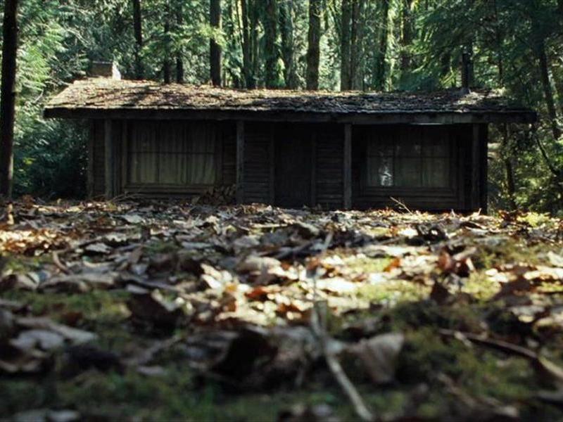 Рассказы первый раз в лесу с парой фото 603-771